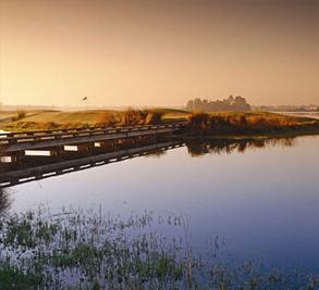 Lakewood Ranch Image 4