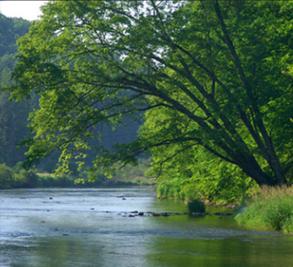 Elk Creek Mountain Image 1