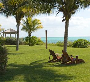 Shoreline Grand Bahama Island Image 2