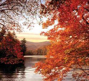 Bear Lake Reserve Image 3