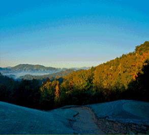 Champion Hills Image 3