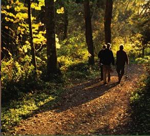 Brunswick Forest Image 4