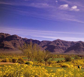 Superstition Mountain Golf and Country Club Image 1