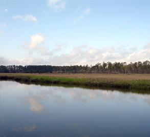 Chadwick Shores Plantation Image 1