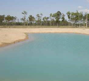 Chadwick Shores Plantation Image 2