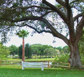 Oak Manor Image