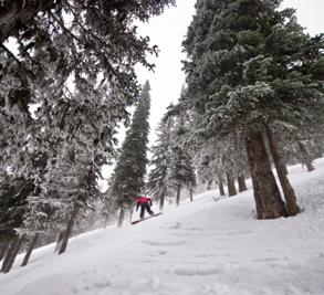Red Mountain Resort Image 3