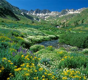 Silverton Colorado Image