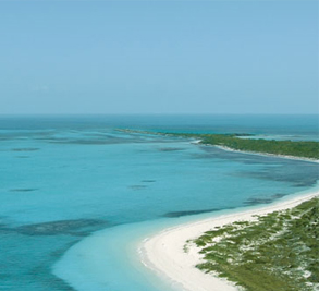 Molasses Reef Image