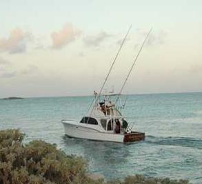 Chub Cay Image