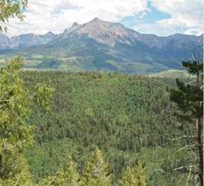 Brown Dog Ranch-McKeough Land Company Image