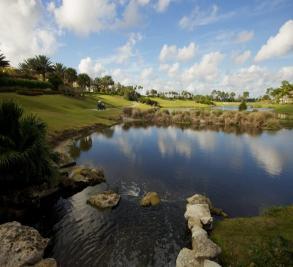 Old Palm Golf Club Image 2