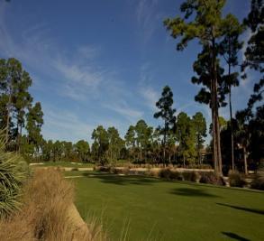 Old Palm Golf Club Image 3
