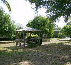 Ranchero Village Image 1