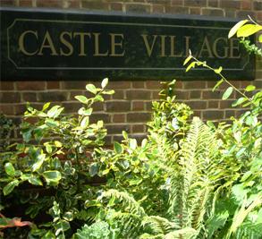 Castle Village Image