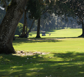 Continental Country Club Image 4