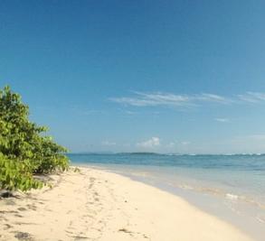 Al Natural Resort Image 1