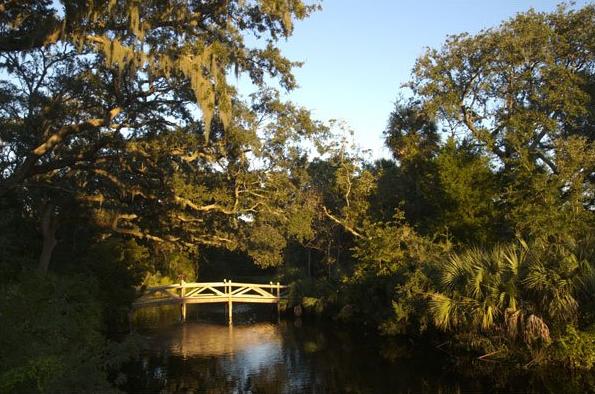 Amelia Island Plantation Image 8